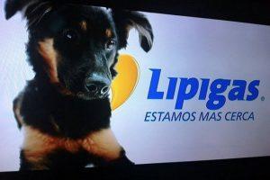Foto:Image CrReproducción edit. Imagen Por: