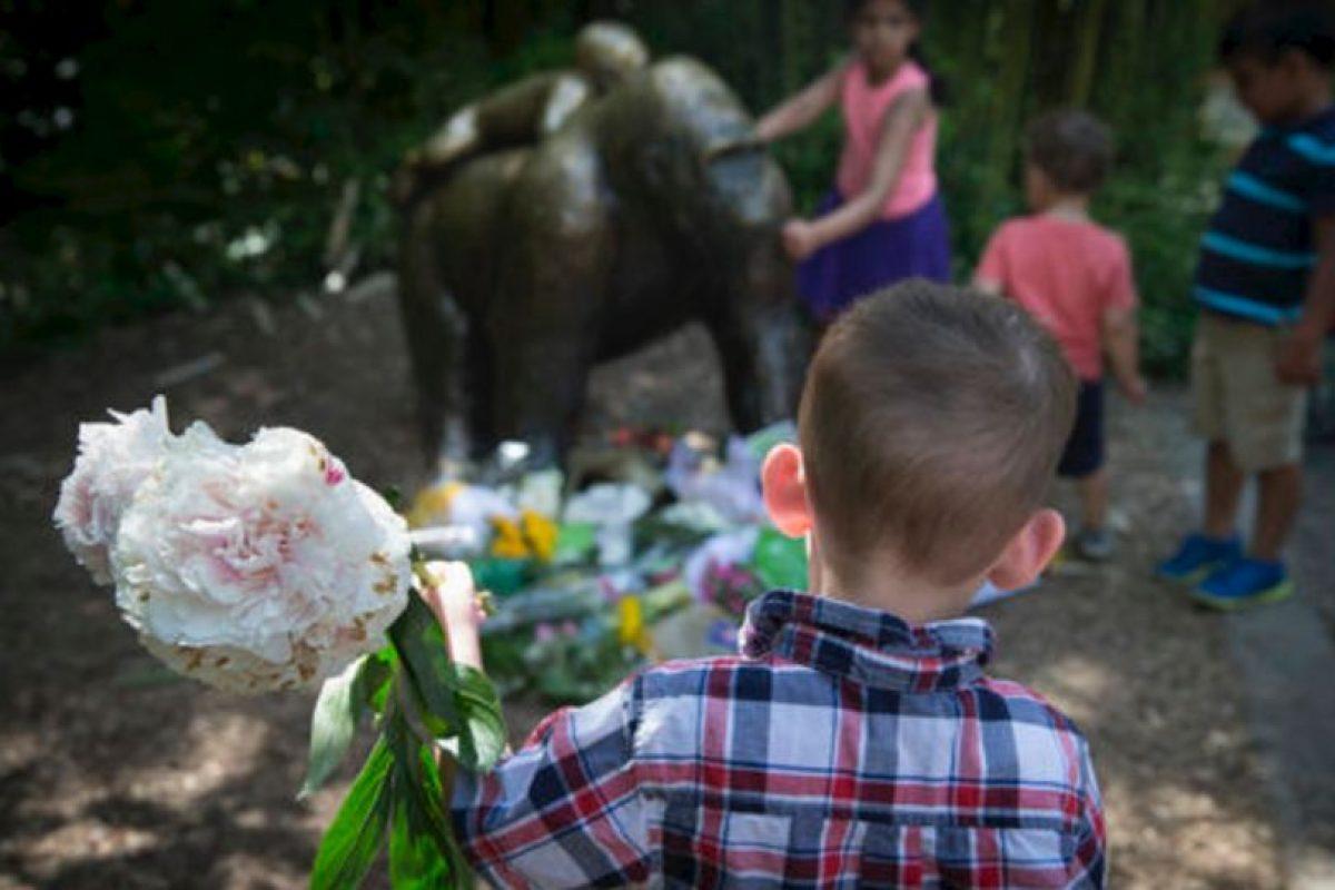Los padres del niño incluso han sido amenazados. Foto:vía AP. Imagen Por: