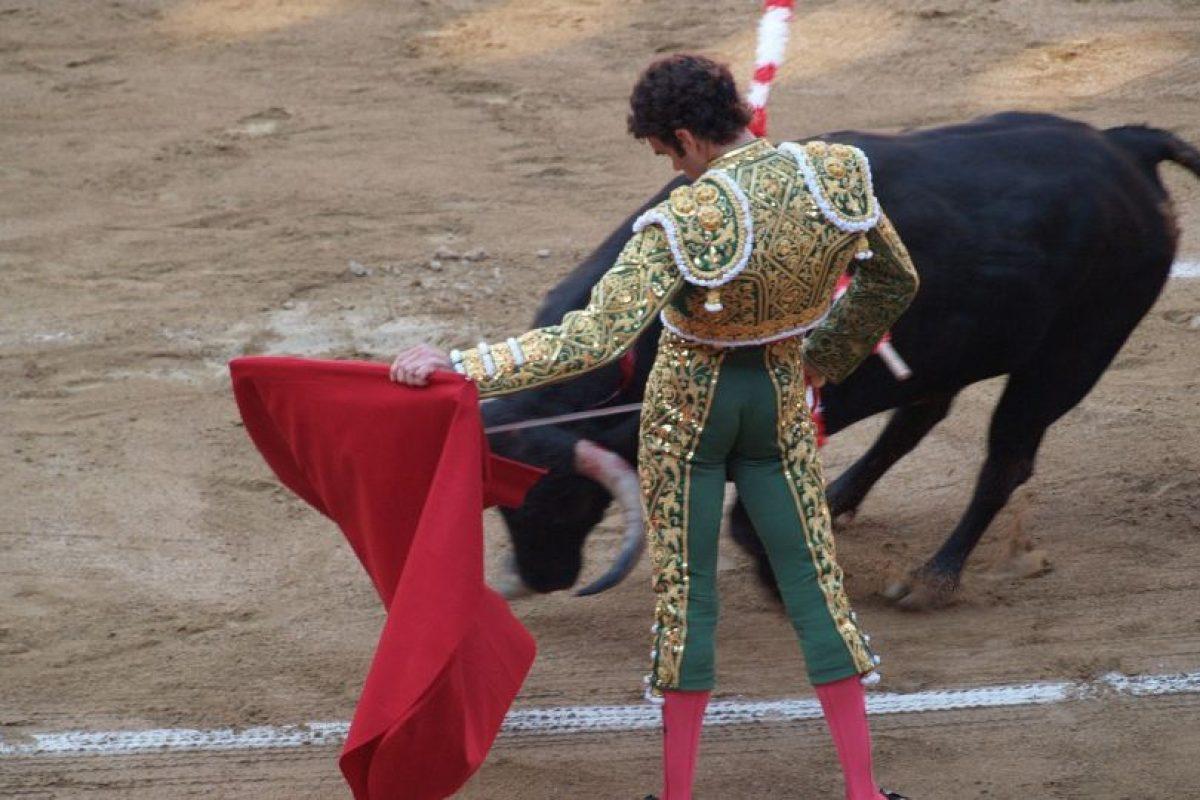La fiesta taurina mexicana se encuentra de luto Foto:PIXABAY. Imagen Por: