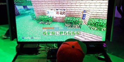 Listado imperdible: cinco cosas que debes saber de Minecraft