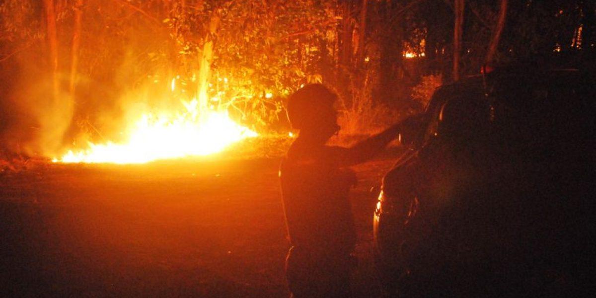 La Araucanía: incendio afectó a predio aledaño al fundo de la familia Luchsinger