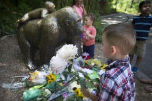 El gorila tenía 17 años. Foto:AP. Imagen Por: