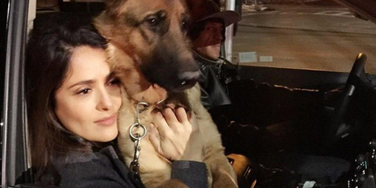 Salma Hayek asegura que intentó engañar a su marido y falló en el intento