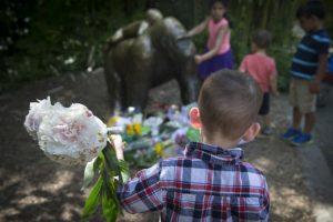 Visitantes del zoológico de Cincinnati homenajearon al primate con flores y cartas. Foto:AP. Imagen Por: