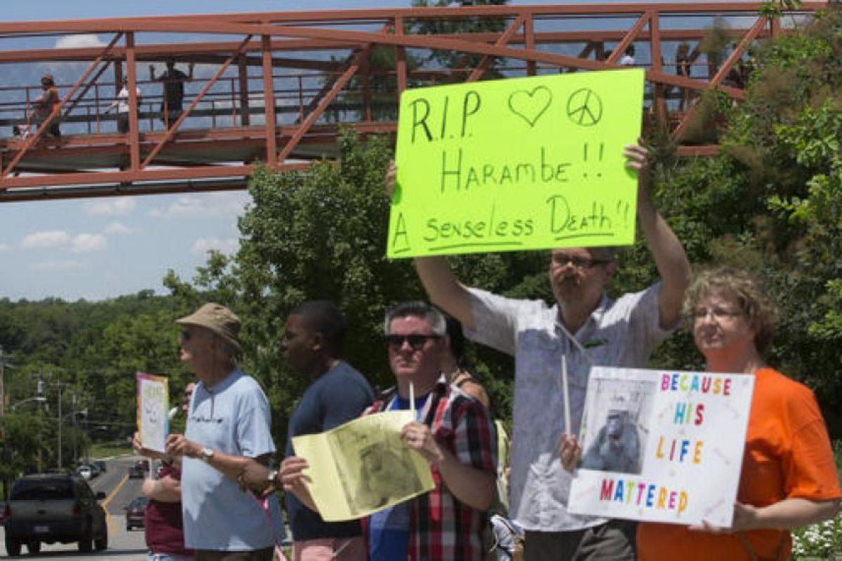 Durante la semana pasada hubo distintas protestas respecto a la situación. Foto:AP. Imagen Por:
