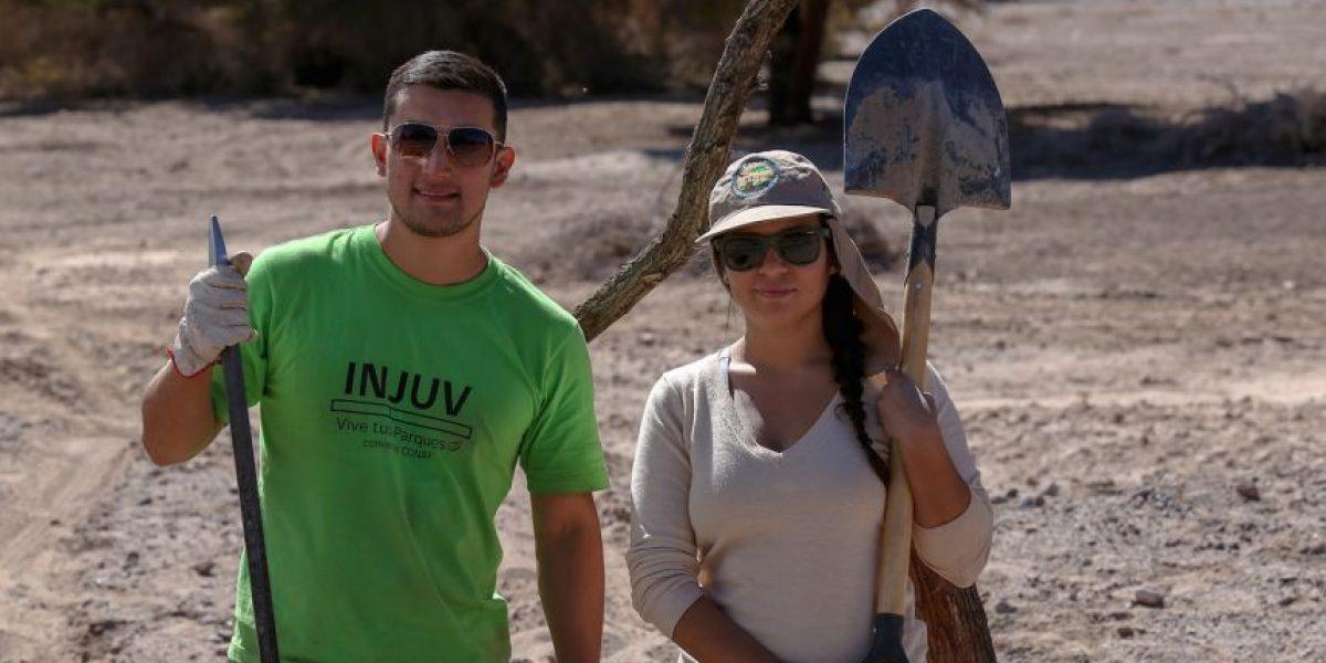 Injuv y Conaf lanzan programa de trabajos voluntarios de invierno en Parques Nacionales