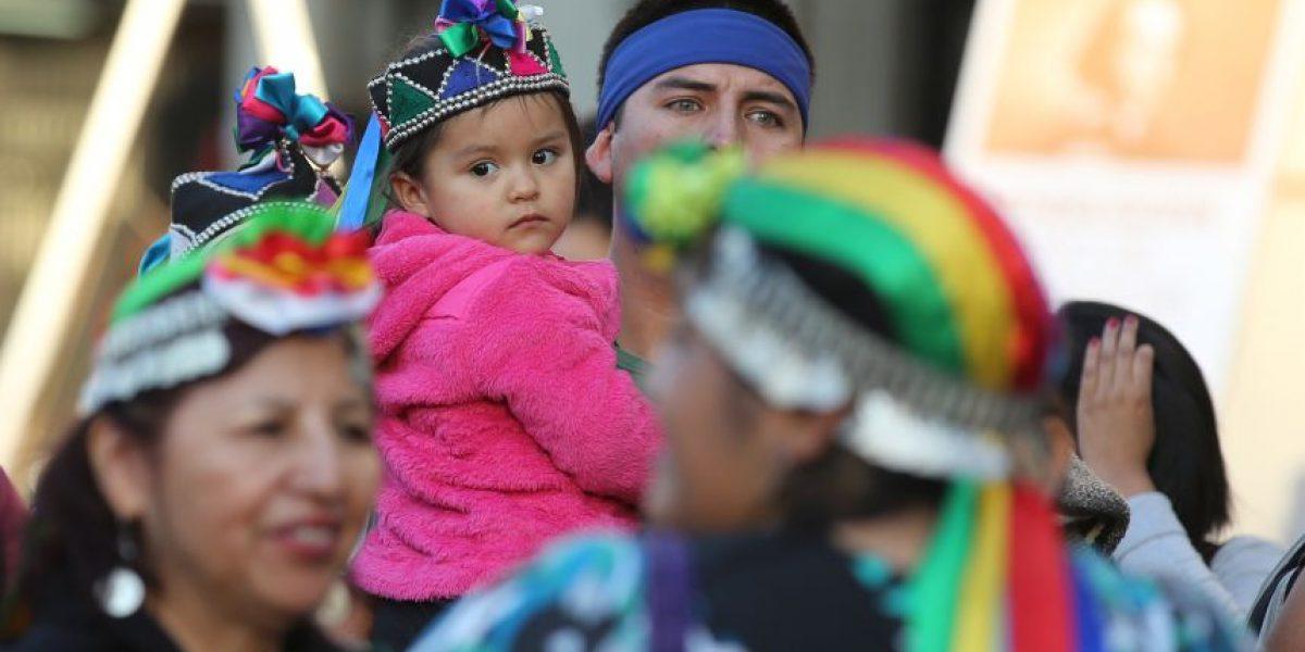 Encuesta CEP: 58% de los mapuche no justifica la violencia por tierras