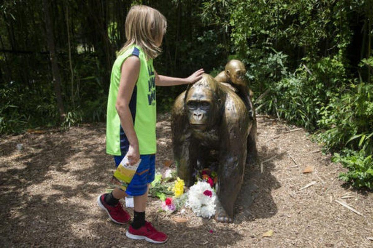 También se le rindió tributo en el zoológico de Cincinnati Foto:AP. Imagen Por: