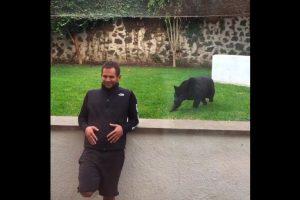 Un video que causa sensación muestra el ataque de la pantera a este hombre. Foto:Black Jaguar White Tiger Foundation. Imagen Por: