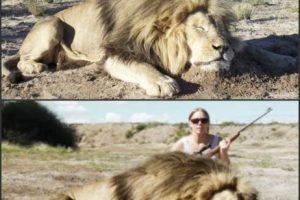 El video está realizado a partir de la composición de una foto real. Foto:Snopes.com. Imagen Por: