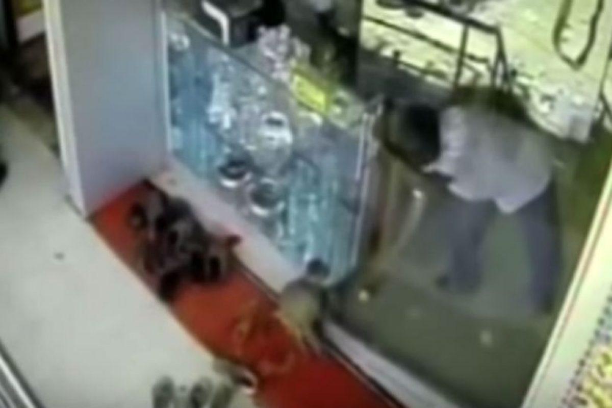 El mono no buscaba comida. Foto:YouTube/ODN. Imagen Por:
