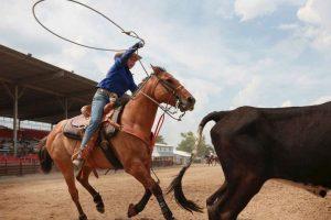 Grupos animalistas se oponen a esta práctica, ya que es considerada como abuso animal Foto:Getty Images. Imagen Por: