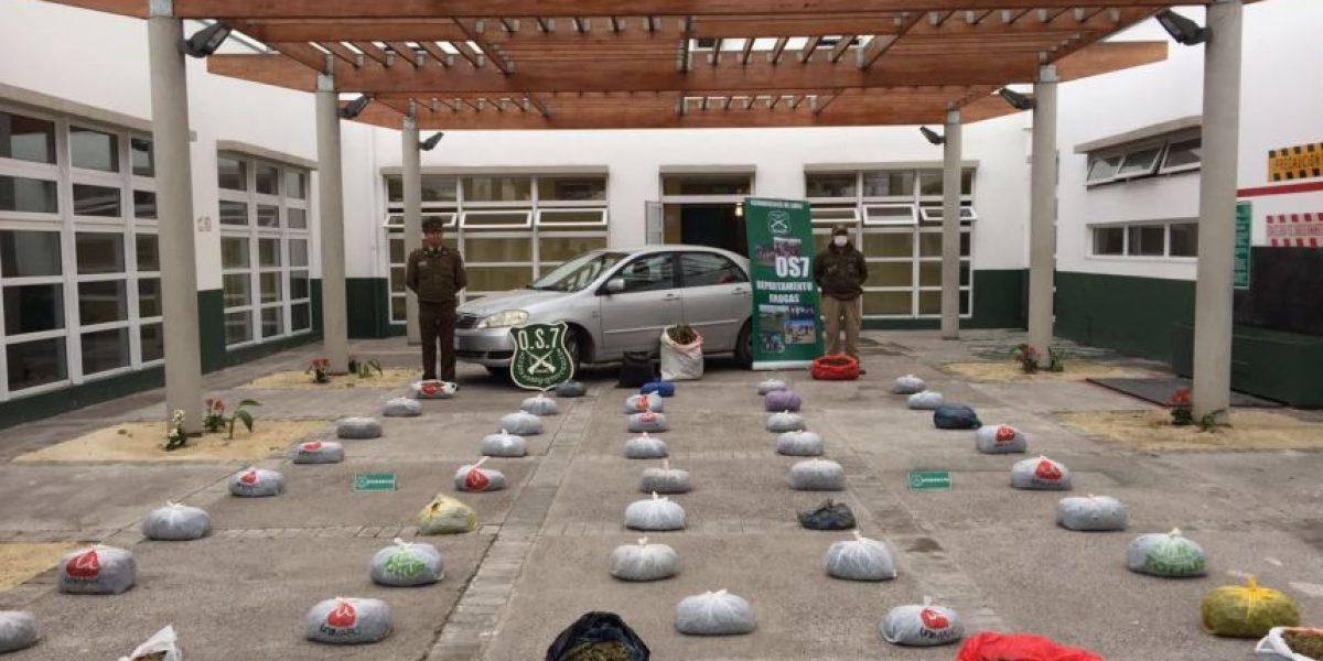 Carabineros detiene a familia narco e incauta $200 millones en droga