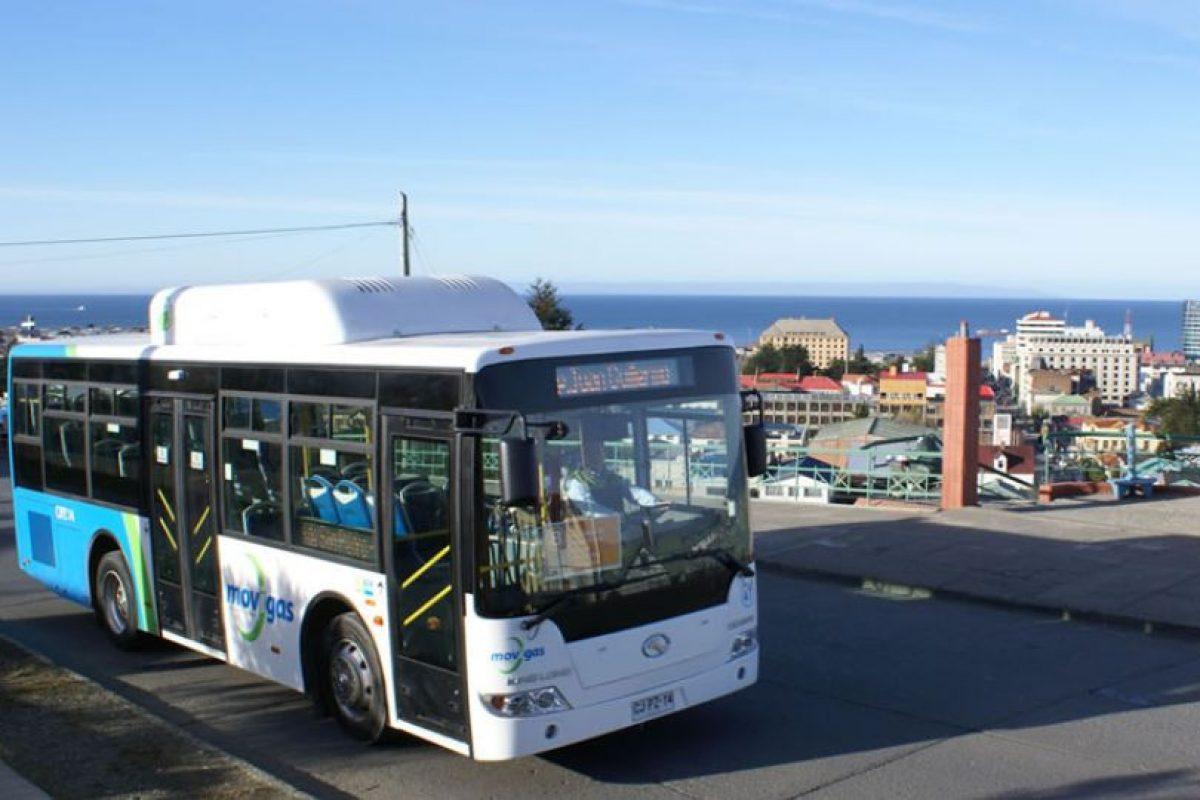 Los buses a gas que operan en Punta Arenas generan 10 veces menos emisiones que los buses del Transantiago en la capital. Foto:Movigas.cl. Imagen Por: