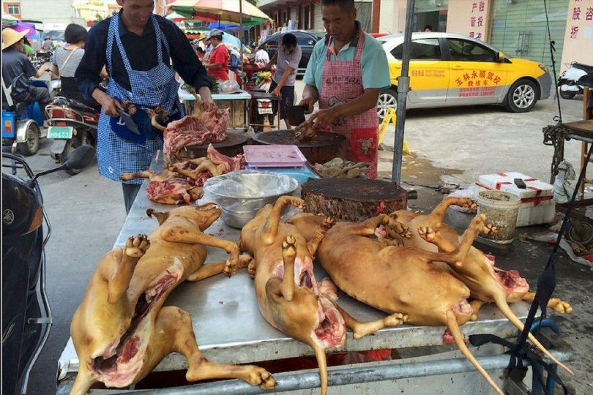 El 21 de junio da inicio el Festival de Carne de Perro de Yulin, al sur de China. Foto:AP. Imagen Por: