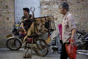 Las autoridades pidieron a los vendedores no descuartizar a los perros en la calle Foto:AP. Imagen Por: