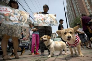 Hubo manifestaciones en contra del festival Foto:AP. Imagen Por: