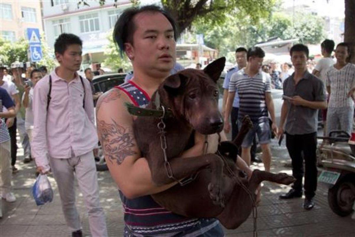 Algunos activistas compraron perros para rescatarlos Foto:AP. Imagen Por: