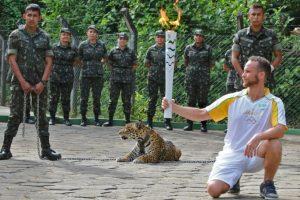 Intentó atacar a su cuidador Foto:AFP. Imagen Por: