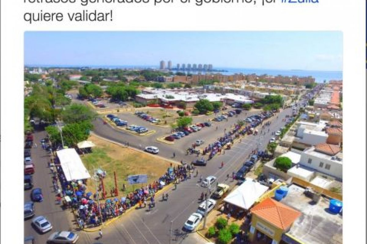 Foto:Twitter.com/RevocaloYA. Imagen Por: