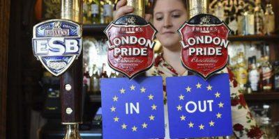 ¿Qué define el referendo por el