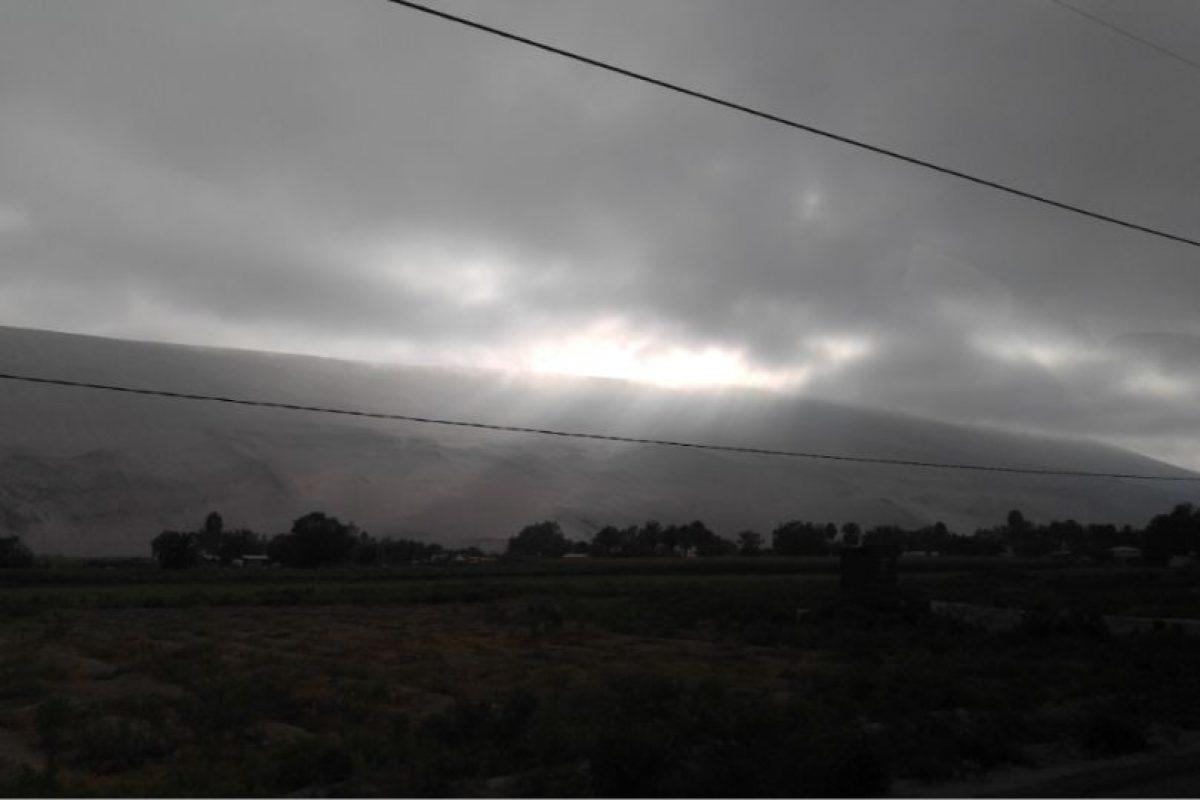 Imagen capturada en movimiento desde un vehículo en la mañana con la configuración automática. Foto:Publimetro / Víctor Jaque. Imagen Por: