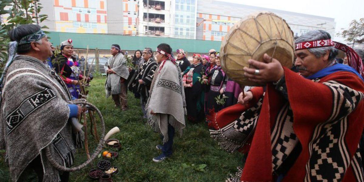 Gendarmería autorizó salida de machi Linconao para celebrar We Tripantu