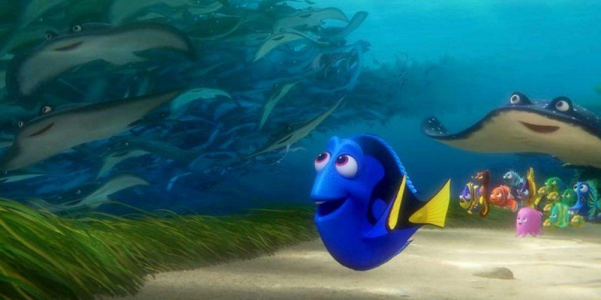 La historia cruel detrás de los peces de