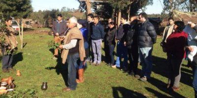 Día del Árbol: reforestan área perimetral de laguna el Loro en Chol-Chol