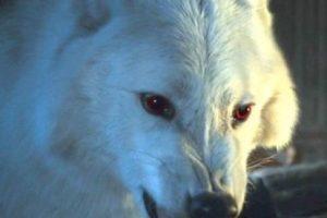 Fantasma en la temporada 6 Foto:Vía HBO. Imagen Por: