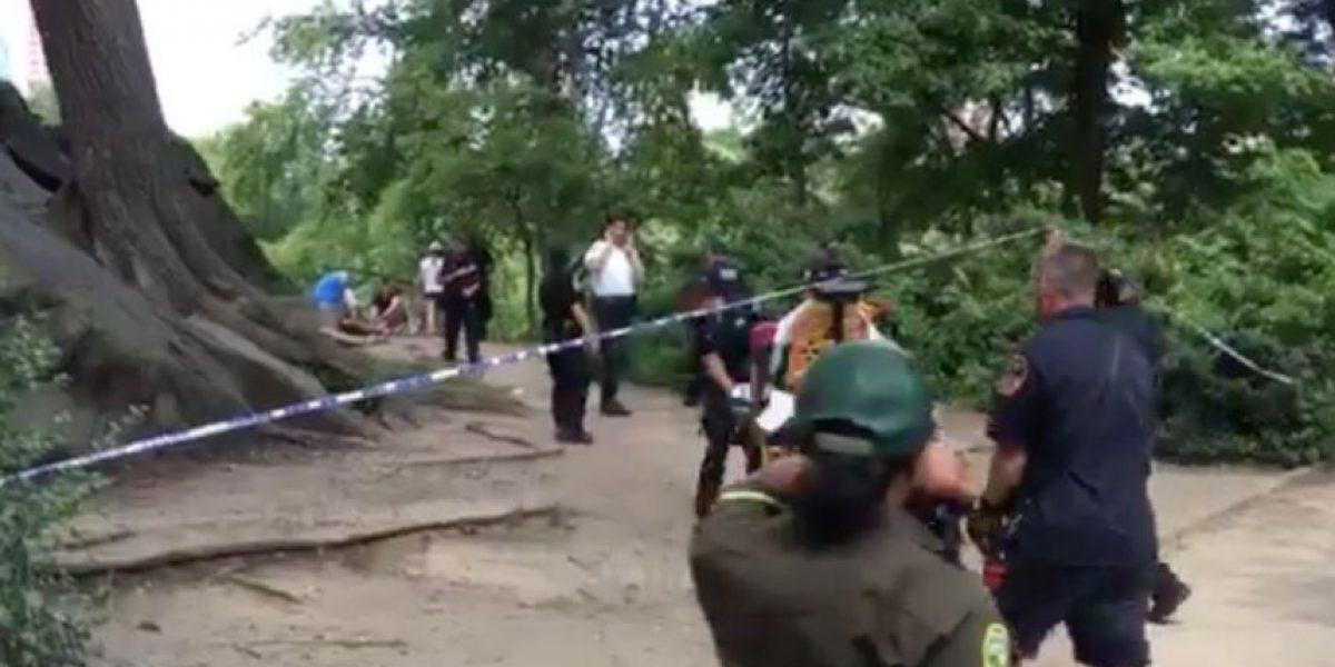 Reportan explosión en Central Park en Nueva York
