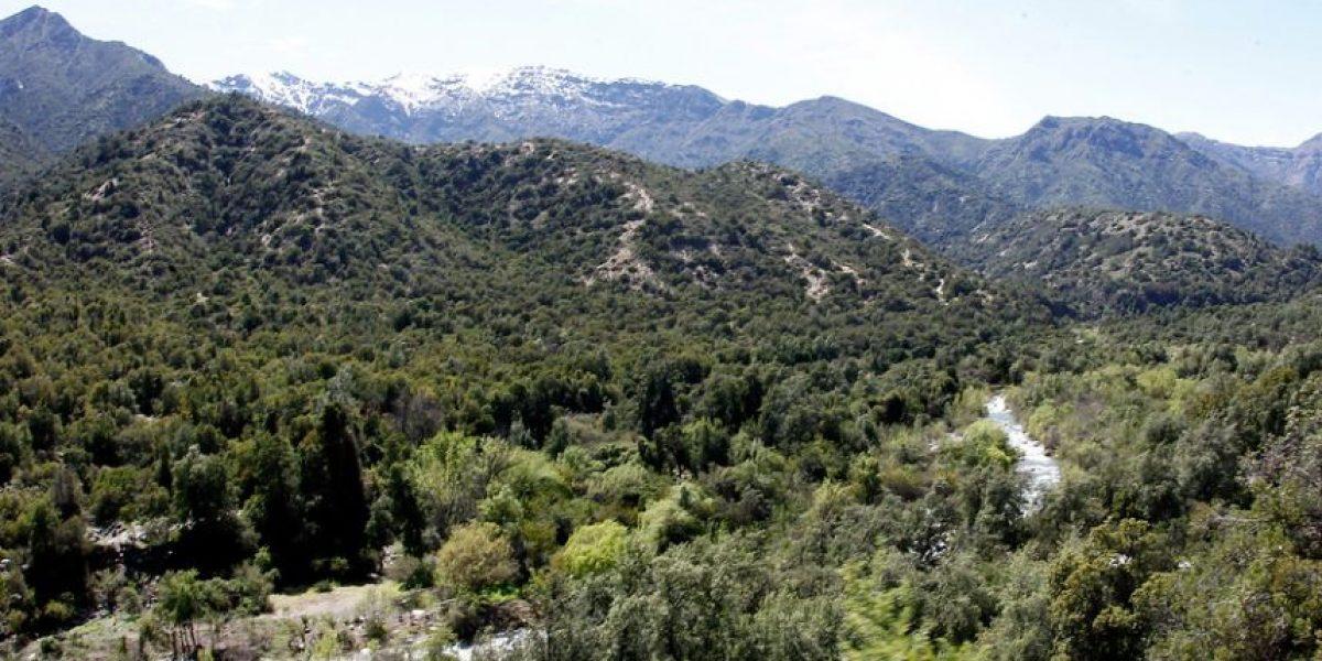 Consejo de Ministros aprueba la creación del primer Parque Nacional en la Región Metropolitana