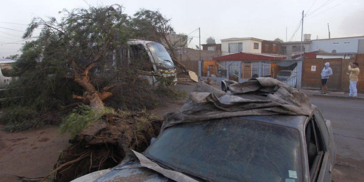 Viento y lluvia sorprenden a los habitantes de la zona norte de Chile