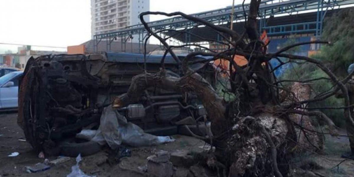 Así quedó la ciudad de Iquique tras vientos que superaron los 90 km/hora