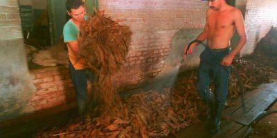 Uruguay consiguió una victoria histórica en litigio con gigante tabacalera