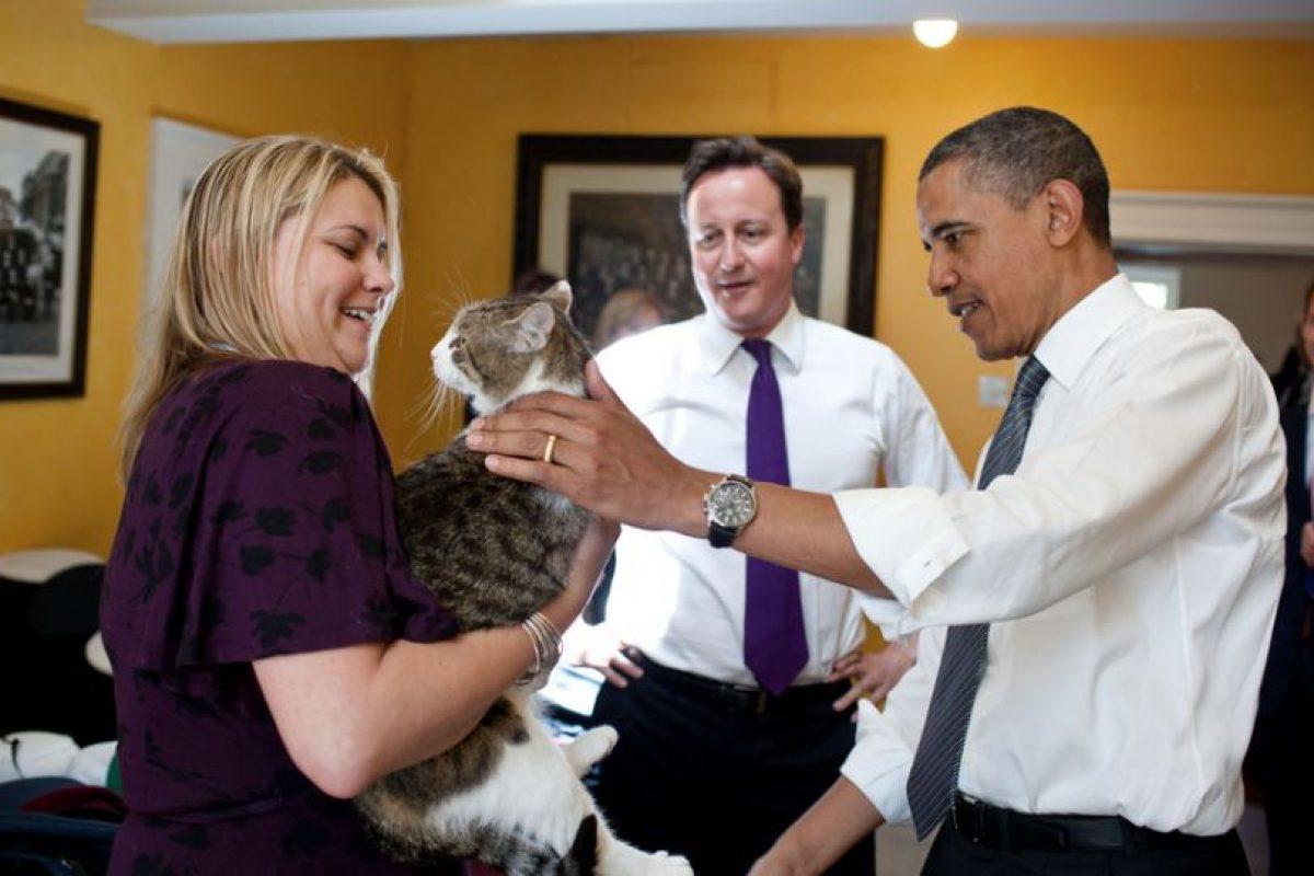 El gato Larry con Obama y Cameron Foto:AFP. Imagen Por: