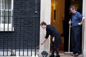 El gato Larry, afuera de su casa, el 10 de Downing Street Foto:AFP. Imagen Por: