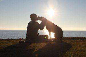 Robert Kugler y su hermosa perra Bella emprendieron un último viaje por todo Estados Unidos. Foto:Facebook Robert Kugler. Imagen Por: