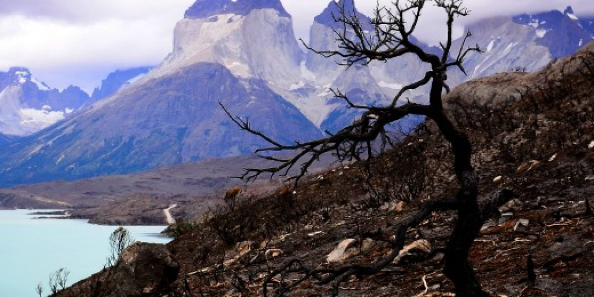 Línea aérea suma un nuevo destino dentro de Chile: Puerto Natales