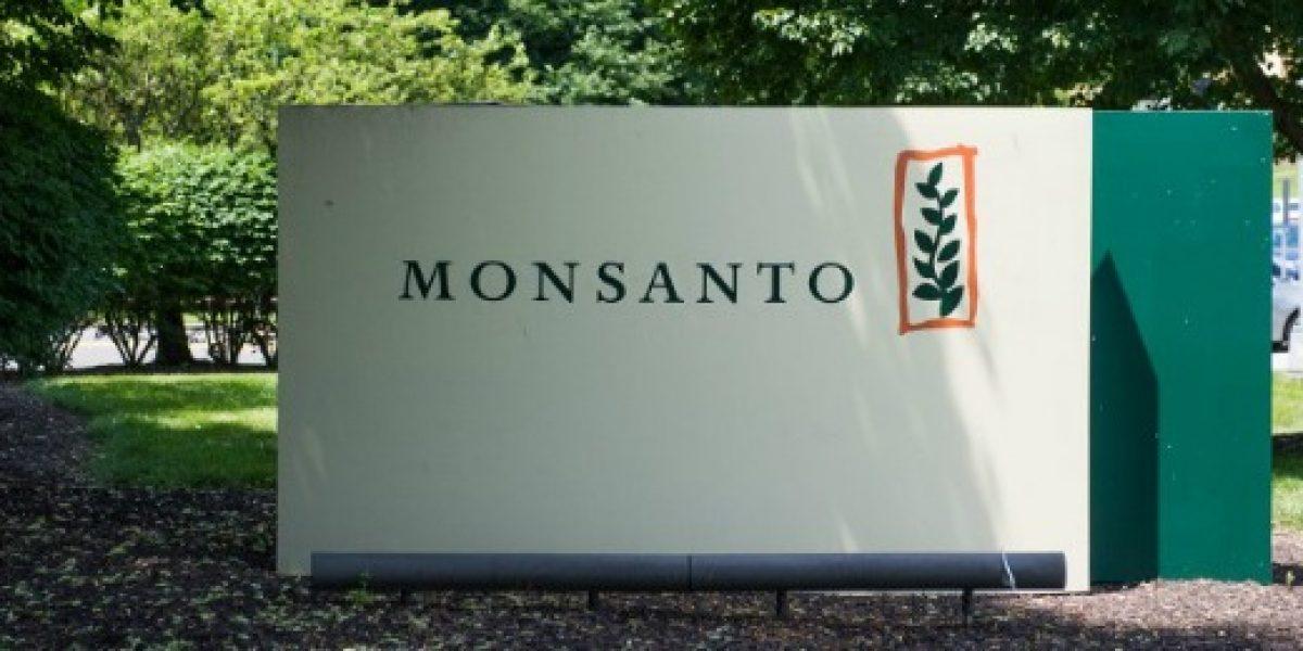 Bayer vuelve a la carga: ofrece más plata a Monsanto por sus acciones