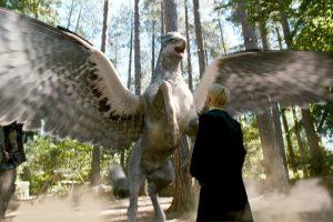 ¿Se imaginan encontrar una criatura así camino a la escuela o el trabajo? Foto:Facebook Harry Potter. Imagen Por: