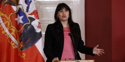 Ministro Fernández y apoyo a Javiera Blanco: la política es difícil pero