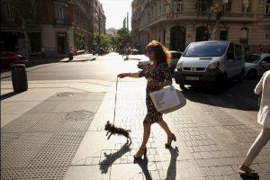 Además de imponer multas, impuestos y penas de cárcel a quienes abandonen a sus mascotas. Foto:Getty Images. Imagen Por: