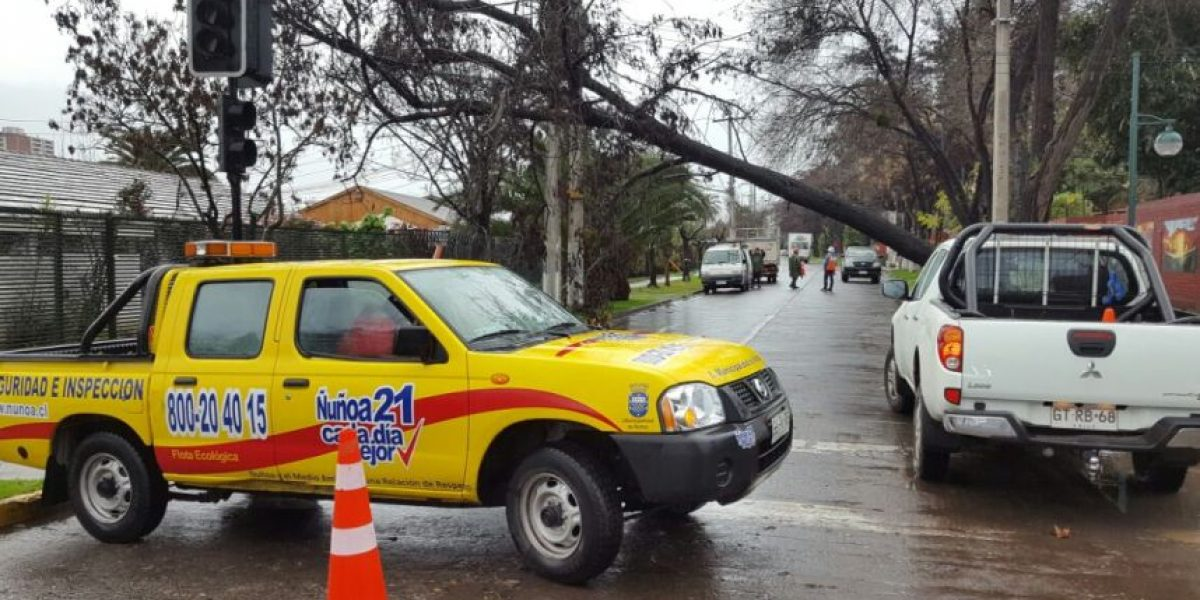 Cortes de luz, árboles caídos y fuertes lluvias deja sistema frontal en la zona central