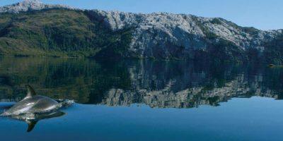 Isla Madre de Dios: el desconocido rincón de Magallanes que postula como Patrimonio de la Humanidad