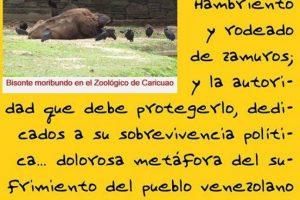 Foto:Facebook.com/marlene.sifontesguevara. Imagen Por: