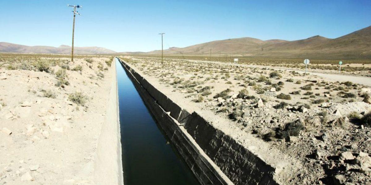Insulza por el Lauca: Bolivia no hace nada con ese río