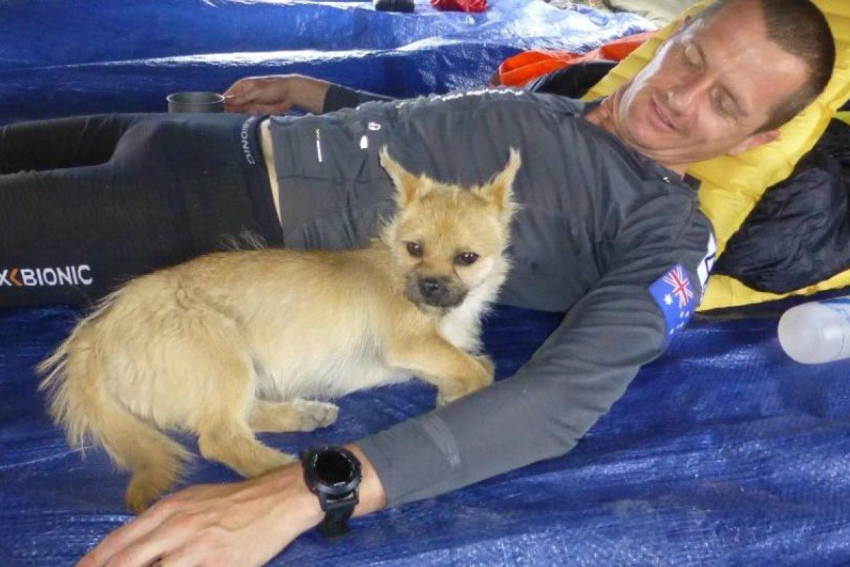 Una perrita que lo siguió durante siete días Foto:Crowdfunder.co.uk/bring-gobi-home. Imagen Por: