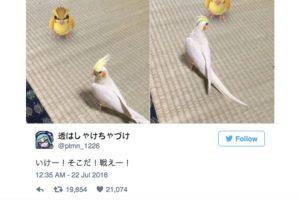 son capaces de ver a estas criaturas virtuales… Foto:Twitter. Imagen Por: