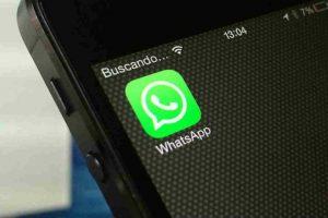 WhatsApp no para de renovarse. Foto:Getty Images. Imagen Por: